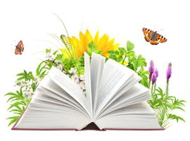corsi_di_norme_e_certificazioni_ambientali